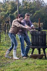 Kroatien, Aljmas, Junger Mann und Frau, die Wein im Weinberg machen
