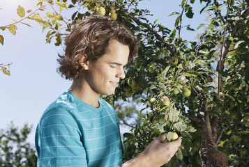 Italien, Toskana, Magliano, Junger Mann mit grünen Oliven, Lächeln