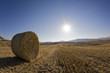 Italien, Toskana, Ballen Stroh auf abgeernteten Feldern