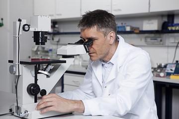 Deutschland, Bayern, München, Wissenschaftler mit Mikroskop im Labor