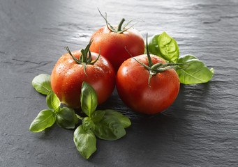Tomaten und Basilikum, Nahaufnahme