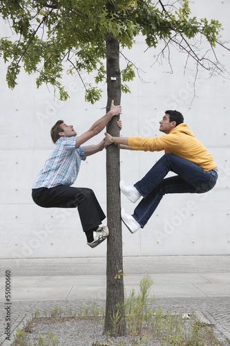 Deutschland, Berlin, Zwei Männer Kletterbaum