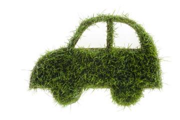 Auto-Symbol aus Gras gemacht