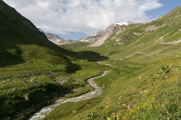 Torrent dans la vallée pastorale de Chavière