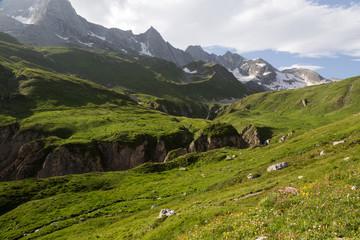 Glaciers de la Vanoise et alpage