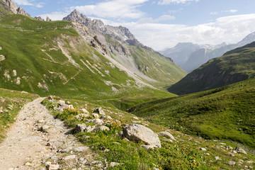 Chemin, alpage et sommets