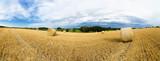 Strohballen auf einem Feld in der Uckermark im Land Brandenburg