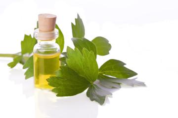 lovage herb essence homeopathy liquid