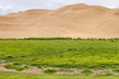 The Gobi Desert, Mongolia - 55018256