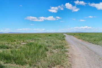 Mongolian wild landscape