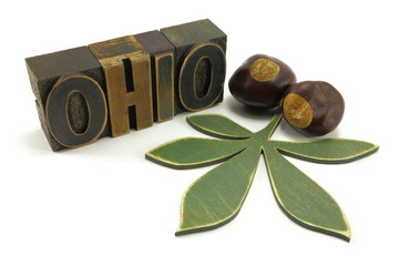 State of Ohio vintage letter press, buckeye leaf and buckeyes