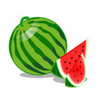 Watermelon Fruit isolated illustration
