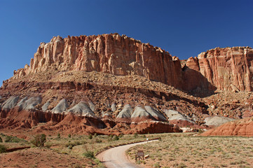Mountain in Capitol Reef National Park, Utah, USA