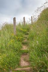 Grassy track leading up steps