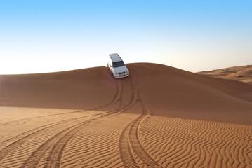 Dune riding in arabian desert