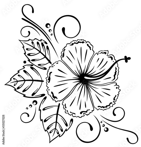 GamesAgeddon - Hibiskus, hibiscus, Ranke, flora, Blumen, Blüten ...