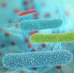 Bacteria - 3D Rendering