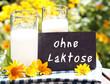 """Milch mit Tafel """"ohne Laktose"""""""