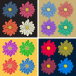 Multicolor set of flowers