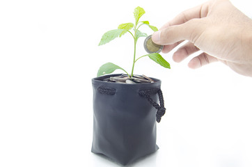 Investing to green business .