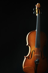 Violin orchestra musical instruments