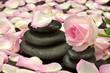 Róża z kamieniami do spa