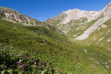 Alpage et vallée de chavière