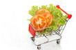 Tomato slice and lettuce in shopping cart