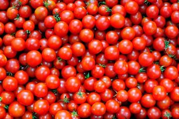 Tappeto di pomodorini
