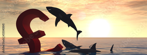 Conceptual crisis pound in water at sunset banner
