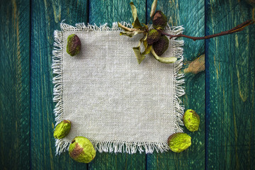 Art background dried fruit vintage quince