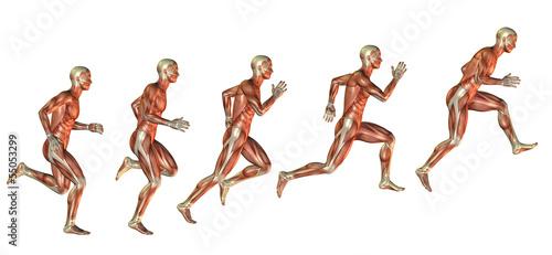 Spoed canvasdoek 2cm dik Luchtsport Muskelstudie beim Ansatz zum Sprung
