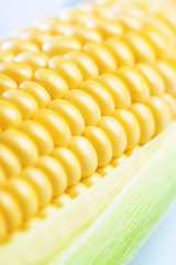 Close up of sweet corn