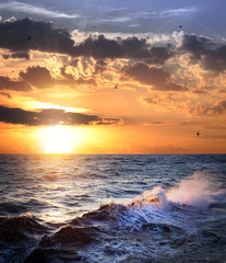 Stormy sea with sundown and birds / beautiful weather