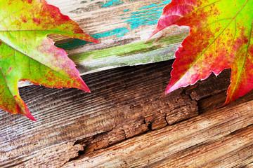 Herbst - Hintergrund