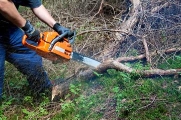 Waldarbeiter ©yvonneweis