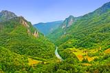 Mountain river Tara in Montenegro hdr poster