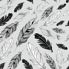 graphic texture of feathers