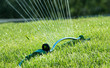 water sprinkler on grass