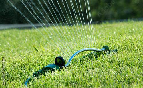 water sprinkler on grass
