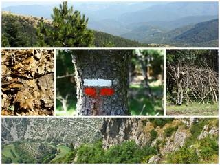 montage, parcours randonnée en montagne