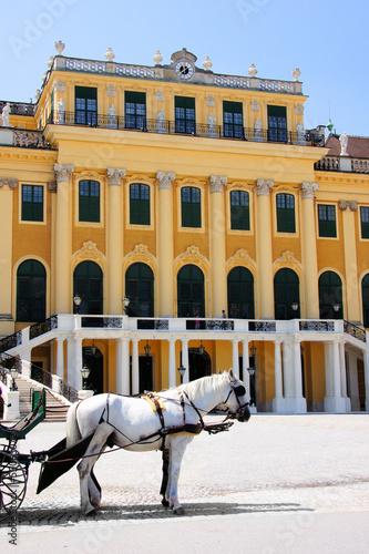 Schonbrunn Palace, Vienna, Austria with carriage horse