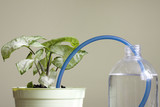Invention of watering plants creative concept of protection poster