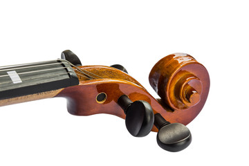 Scroll and pegbox of violin