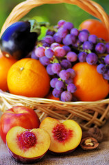 Basket full of citrus fruits and peaches