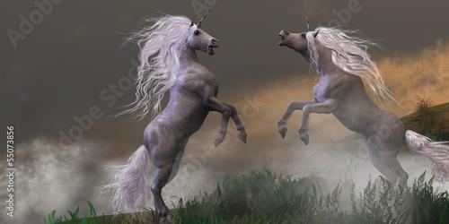 Fototapeten,einhorn,pferd,tier,equine