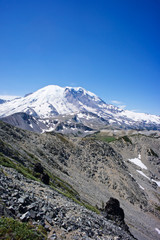 Mount Rainier from the Sunrise Area