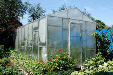 greenhouse for one family