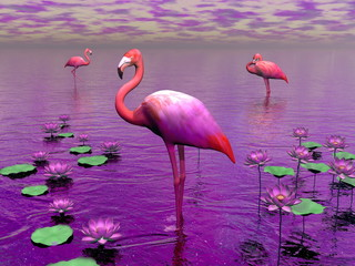Flamingos and water lilies - 3D render
