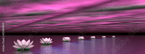 Obraz Water lilies steps to the sun - 3D render